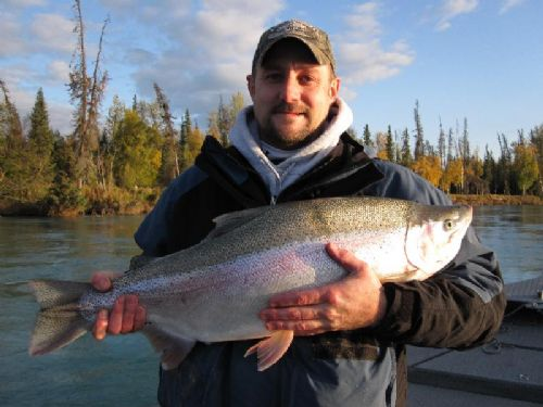 Huge Kenai River Rainbow