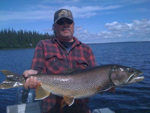 Alaska lake trout