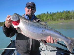 Kenai fishing report