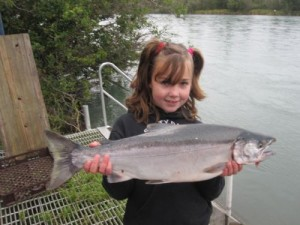 kenai-fishing-report-kasilof - Litlle girl and  king salmon