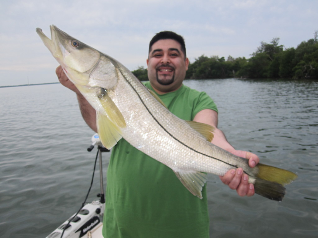 Young man holding  hige snook - Fort Myers daily fishing report