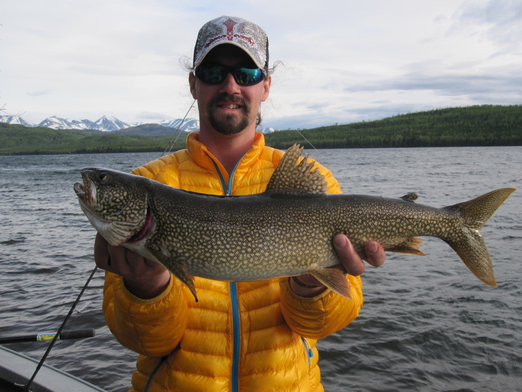 Lake Trout Fishing. A large lake trout held by a young man on a boat