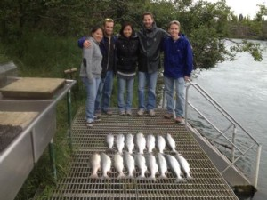 kasilof and kenai fishing report - fiver people and 17 silver salmon they caught