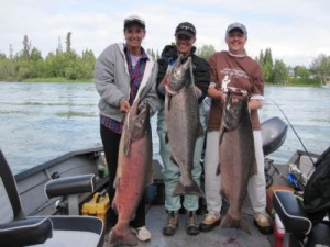 kenai kings late july 008