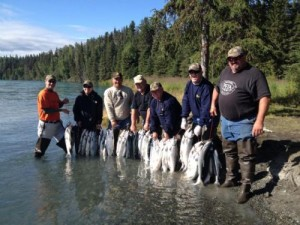 Kenai fishing report. Six men standing  in the shallows and  rainbow trout they caught