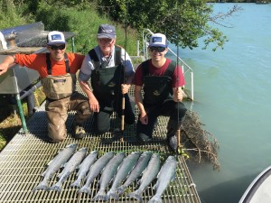 Three Karakoram Fishing guys with nine Kenai River sockeye.